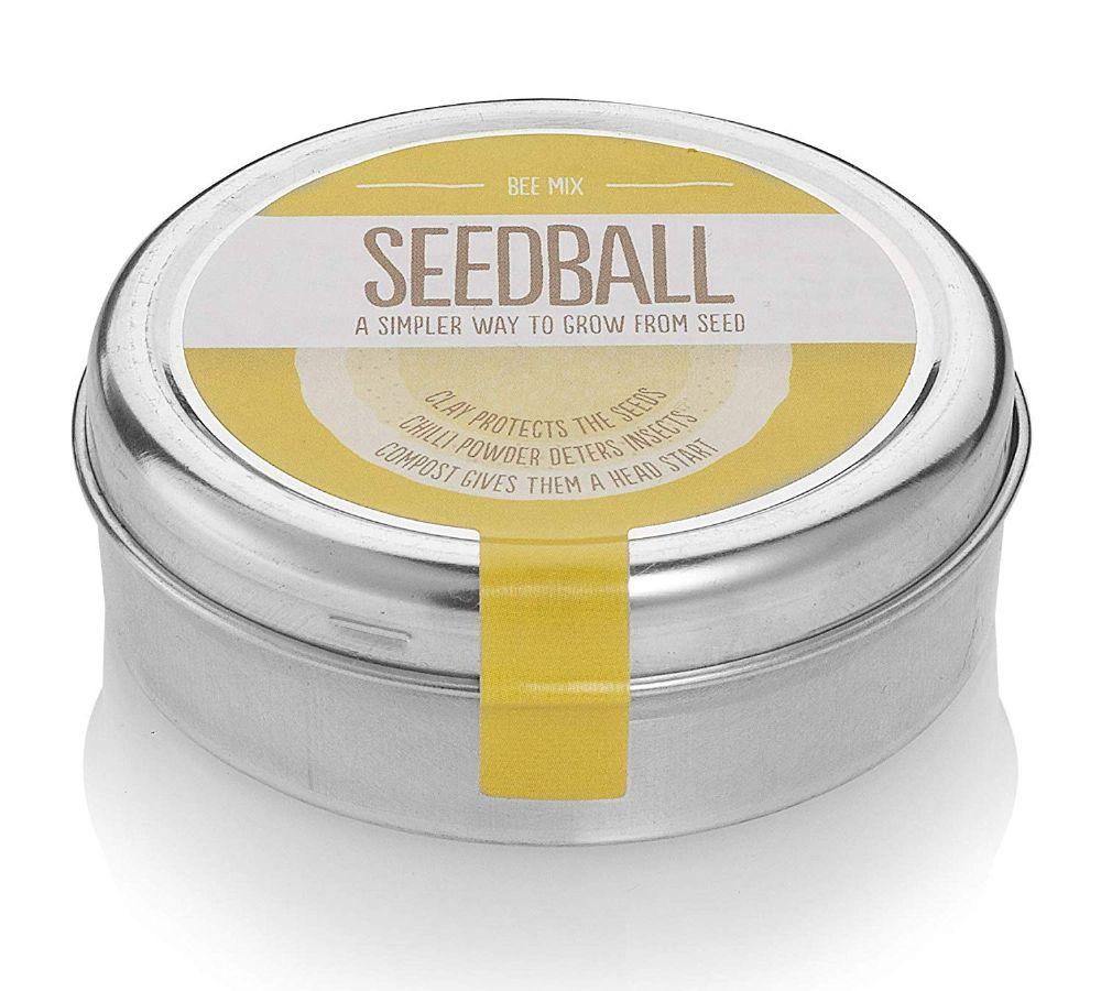 Bee mix Seedballs to attract them to your garden